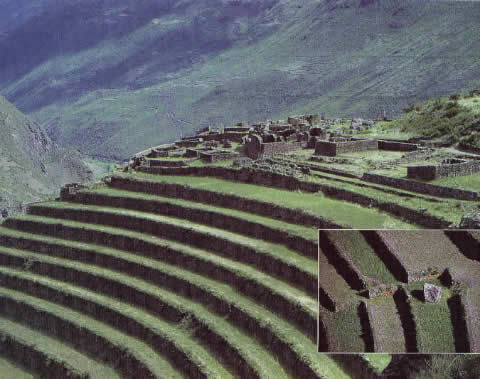 Terraces water history for Terrace cultivation meaning